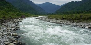 Arunachal Pradesh Roing