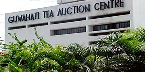 Guwahati Tea Auction Center