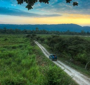 Assam Honeymoon Holidays