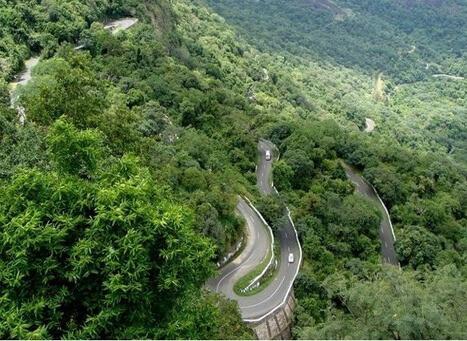 Marayoor Sandalwood Forest Munnar Kerala
