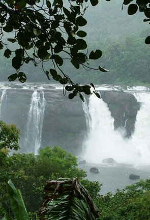 Kerala Nature & Waterfalls Getaways