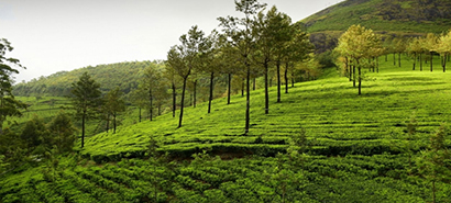 Kerala Ahmedabad Tour Package