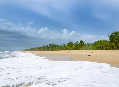 Marari Beach Alleppey