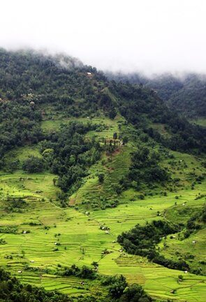 Hill Stations in Nagaland