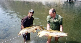 Himalayan Mahseer Fishing Tour