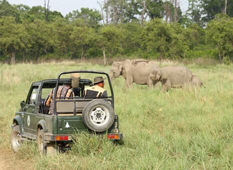 Sitabani Safari Zone Corbett | Sitabani Wildlife Reserve & Forest